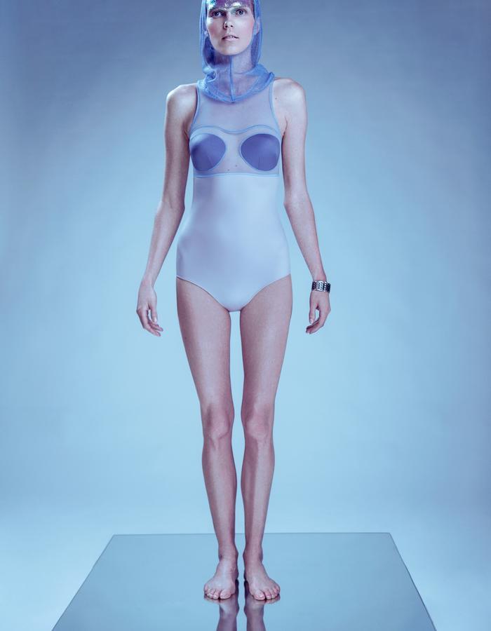 "Model ""Hazy Seal"""