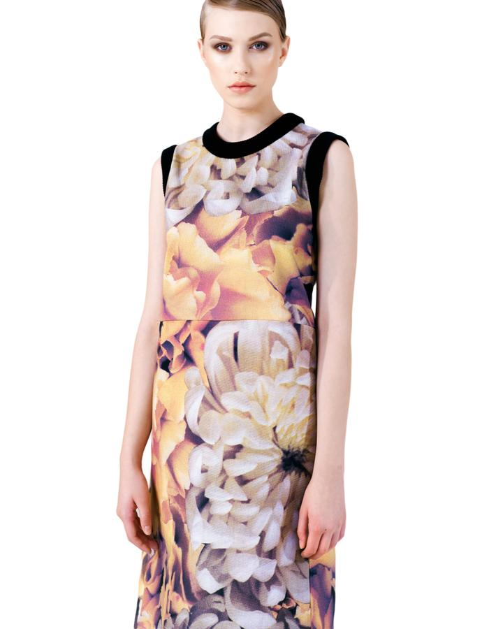 Aura Flora Dress