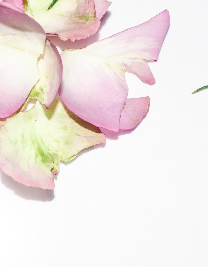 #ISCREAM / #likeprint / Flore Diana