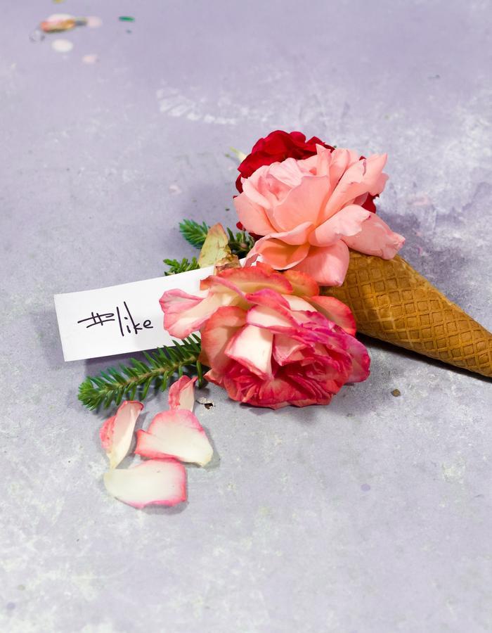 #ISCREAM / 2 #like rose icecream cone / Flore Diana