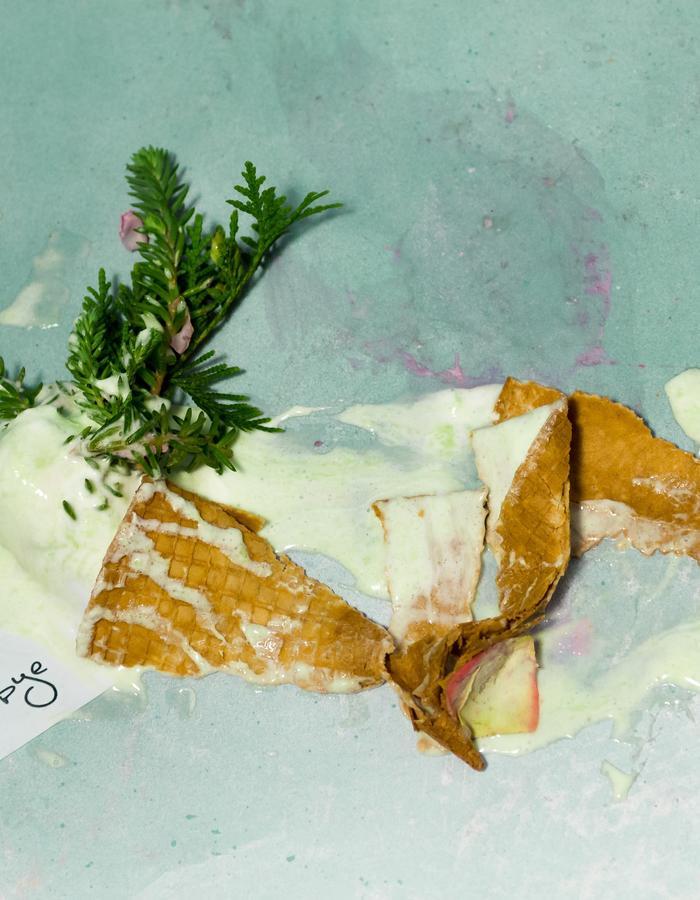 #ISCREAM / 5 #goodbye icecream cone / Flore Diana