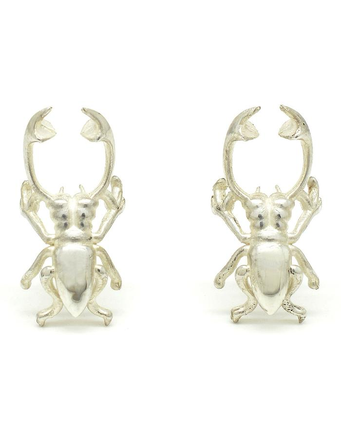 Lucanidae Beetle Stud Earrings