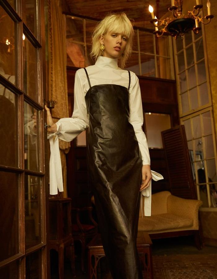 Rayne Blouse + Evelina Leather Dress