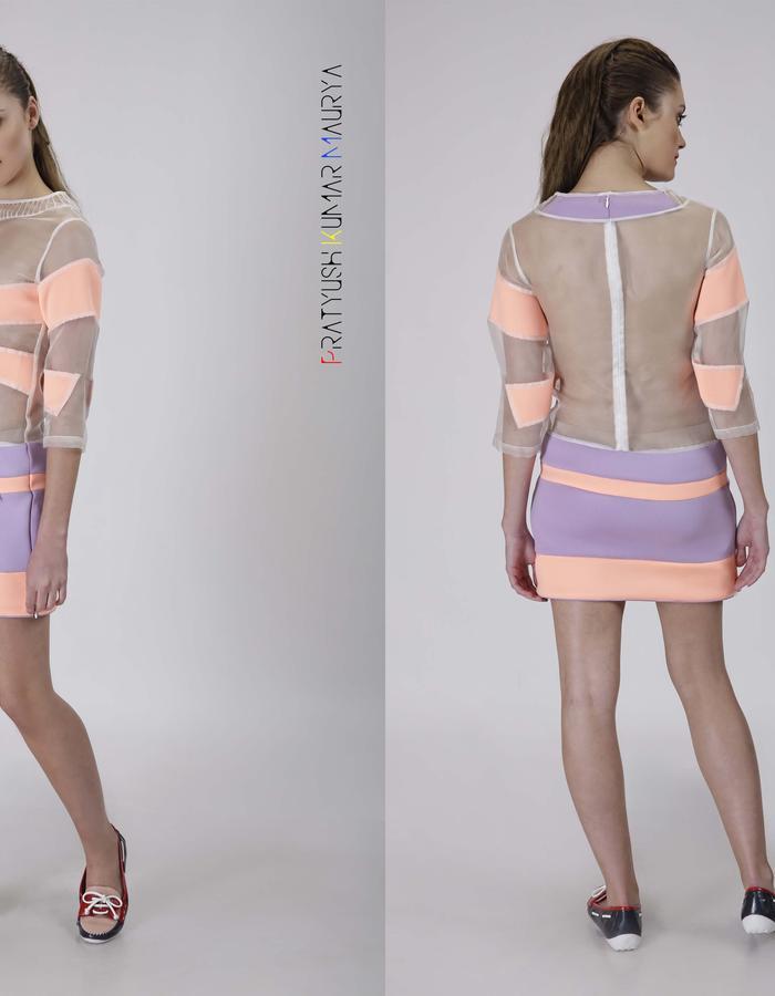 Silk organza-neoprene sheer dress